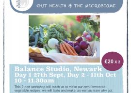 Fermented Food and Gut Health workshops